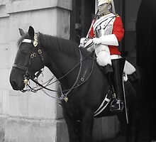 Horse Guard by Lisa Carse