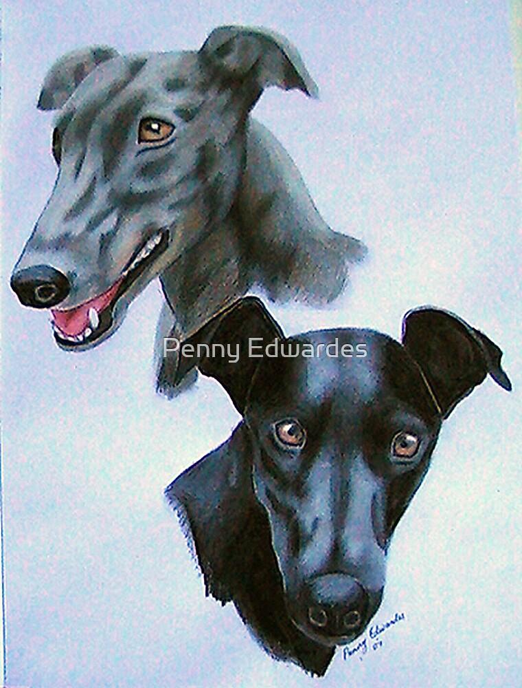 Greyhounds by Penny Edwardes