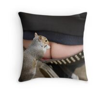 searching for nuts...... Throw Pillow