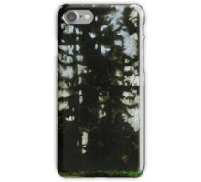 Central Park. Winter. Vancouver. iPhone Case/Skin
