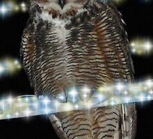 xmas owl by 3rdeye