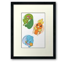 Hoenn Starters - Normal Framed Print