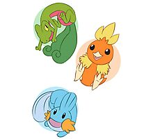 Hoenn Starters - Normal Photographic Print