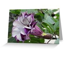 Purple Moon Flower Greeting Card