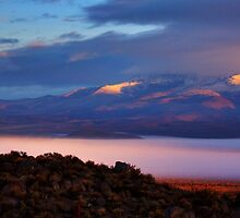 Palomino Valley Glow Fog by SB  Sullivan