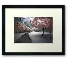 Parkland Path Framed Print