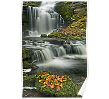 Scalebar Force, Settle Poster