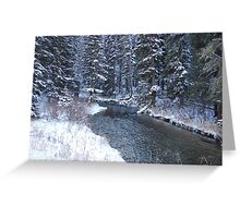 The Canyon and Creek in Snow Greeting Card