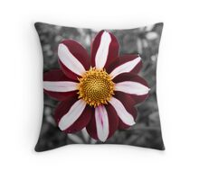 The brightness in my life (Tribute) Throw Pillow