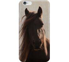 Sunlit fell pony iPhone Case/Skin
