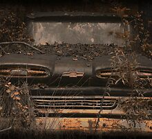 Vintage by Michael Coots