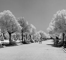 Parc de la Citadella 3 by Troy Dodds