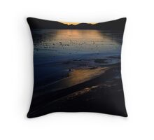 Icy Reflections Throw Pillow