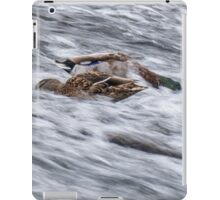 White Water Mallard iPad Case/Skin