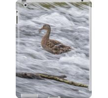 White Water Mallard -The Offering iPad Case/Skin