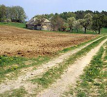 Ye Old Farm by Walter Quirtmair
