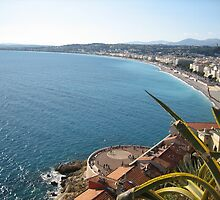 A beautiful view on the sea in Nice in France by dolphin