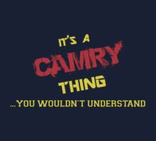It's a CAMRY thing, you wouldn't understand !! by itsmine