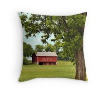 Early Spring Crops in Pennsylvania Throw Pillow