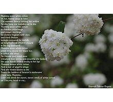 Mamma Wore White Cotton Photographic Print