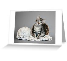 Yarn Tabby Greeting Card