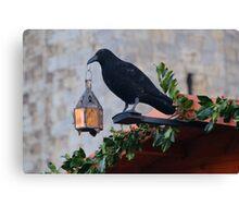 Jackdaw Lamp Holder.......... Canvas Print