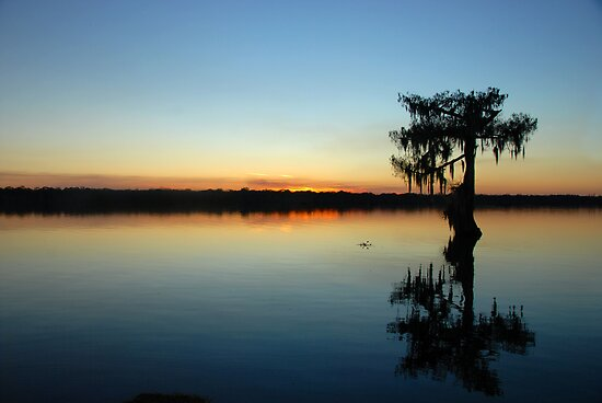 Silent Night in the Deep South by Bonnie T.  Barry