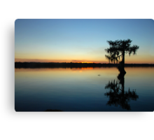 Silent Night in the Deep South Canvas Print