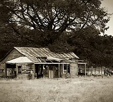 old shack by Martin Pot