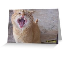 Sure He Looked Harmless! Greeting Card
