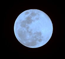 Blue Moon by Michael Collazo
