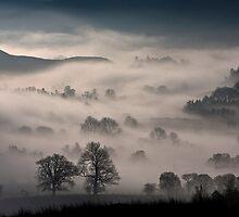 A misty morning by imagesbyalan