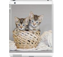 2 Tabby Kittens in Yarn Basket iPad Case/Skin