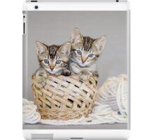 2 Tabby Kittens in Yarn Basket iPad Case/Skin