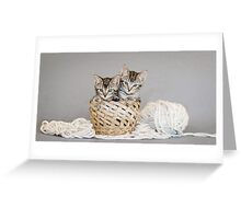 2 Tabby Kittens in Yarn Basket Greeting Card