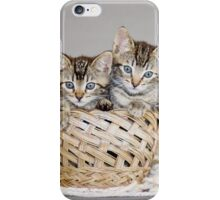 2 Tabby Kittens in Yarn Basket iPhone Case/Skin