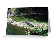 Hungry crocodiles Greeting Card