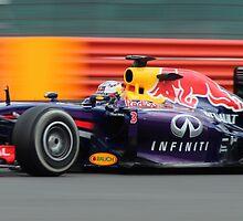 Daniel Ricciardo - Red Bull 2014 by hedgeryhoops