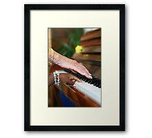 Ebony and Ivory Harmony Framed Print