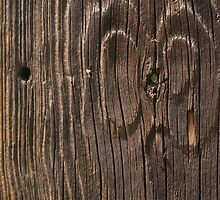 Weathered Wood  by Tony  Bazidlo