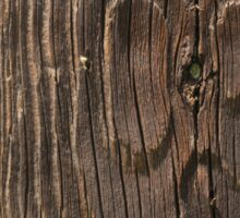 Weathered Wood  Sticker