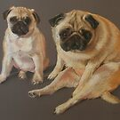 Pastel Pugs by Katie Lancaster