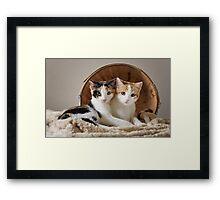 Miriam and MacGill Framed Print