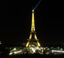 The Eiffel Tower by Night by sandracbt
