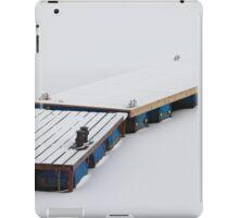 frozen jetty iPad Case/Skin