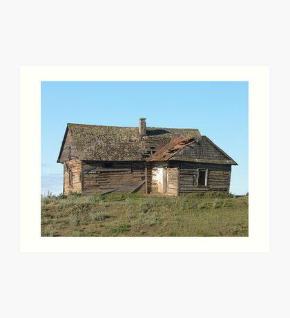 Old Ukrainian homestead Art Print