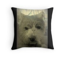 Catdog or Dogcat ? Throw Pillow
