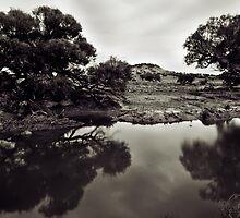 Reflect by Craig Hender