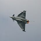 Typhoon T2 by PhilEAF92