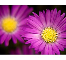 Shining Faces Photographic Print